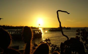 Ile Santa Cruz (Equateur/Galapagos)