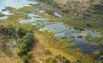 Delta de l'Okavango, Survol (Botswana)