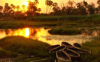 Delta Okavango, Coucher de soleil sur les mokoros (Botswana)