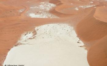 Deadvlei (Namibie)